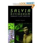 Salvia Divinoru Shamanic Plant Medicine